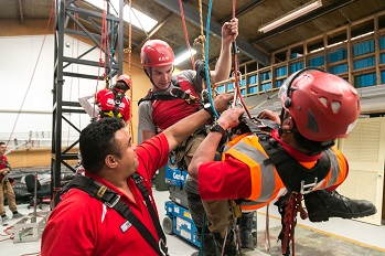 picture of sione doing harness training